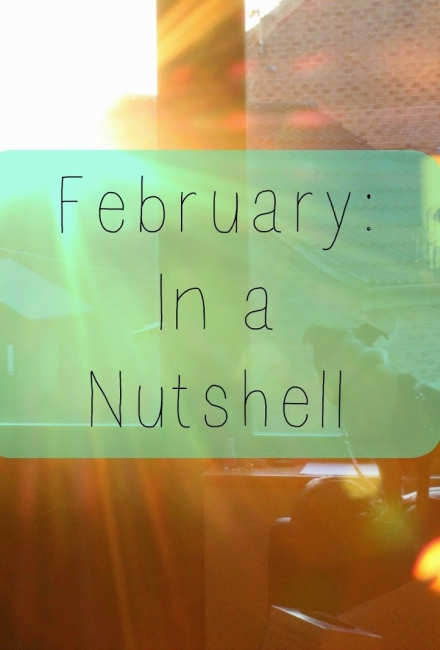 February: In a Nutshell
