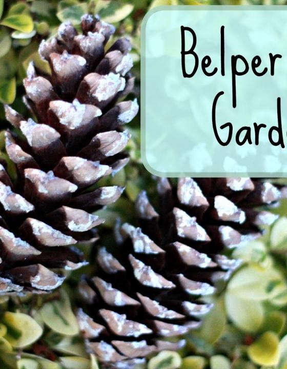 The Weekend Edit: Belper River Gardens