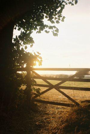 Duffield, Derbyshire, Olympus Trip MD3, Kodak Gold 200, KatieWrites, katiebwrites, Katie Brown, Belper, Derbyshire Bloggers, Photography, Film, 35mm, Photo Diary, ©Katiewrites.co.uk