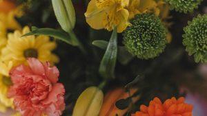 ©Katiewrites.co.uk, katiebwrites, katiewrites, flowers,