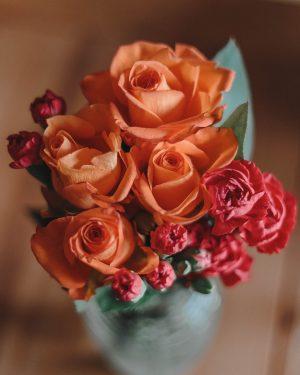 ©Katiewrites.co.uk, February Goals, Derbyshire Blogs, Katie Writes Blog, Katiewrites.co.uk, katiebwrites, katiewritesuk, katiewritescom, katiewrites.com, katiewritesblog.com, roses, carnations, blooms,