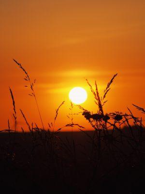 katiebwrites, Katie Writes Blog, Bloggers, Derbyshire, Sunset, Golden Hour, Alport Heights, Grass, Countryside, Derbyshire, Peak District, Amber Valley, Where to go in Derbyshire, Explore the East Midlands,