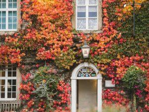 The Old Eyre Arms Hassop, Derbyshire, Peak District, Autumn, Leaves, Castleton, Bloggers,